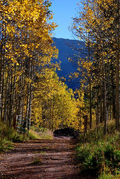 Near Maroon Bells in Colorado 5