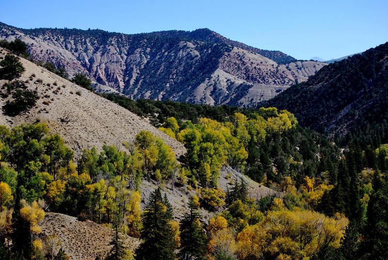 Colorado Scenery in the Fall Season