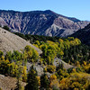 Colorado Scenery in the Fall Season