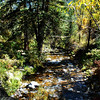Creek in Colorado in the Fall