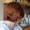 View from the back on Friday after the cut.  You can see the darker red down at the bottom and lots of layers going up!