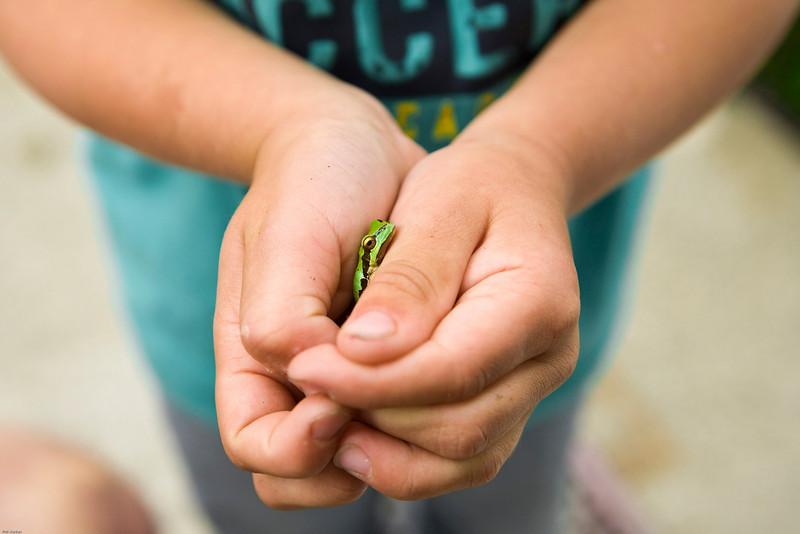 Caden finds a Frog