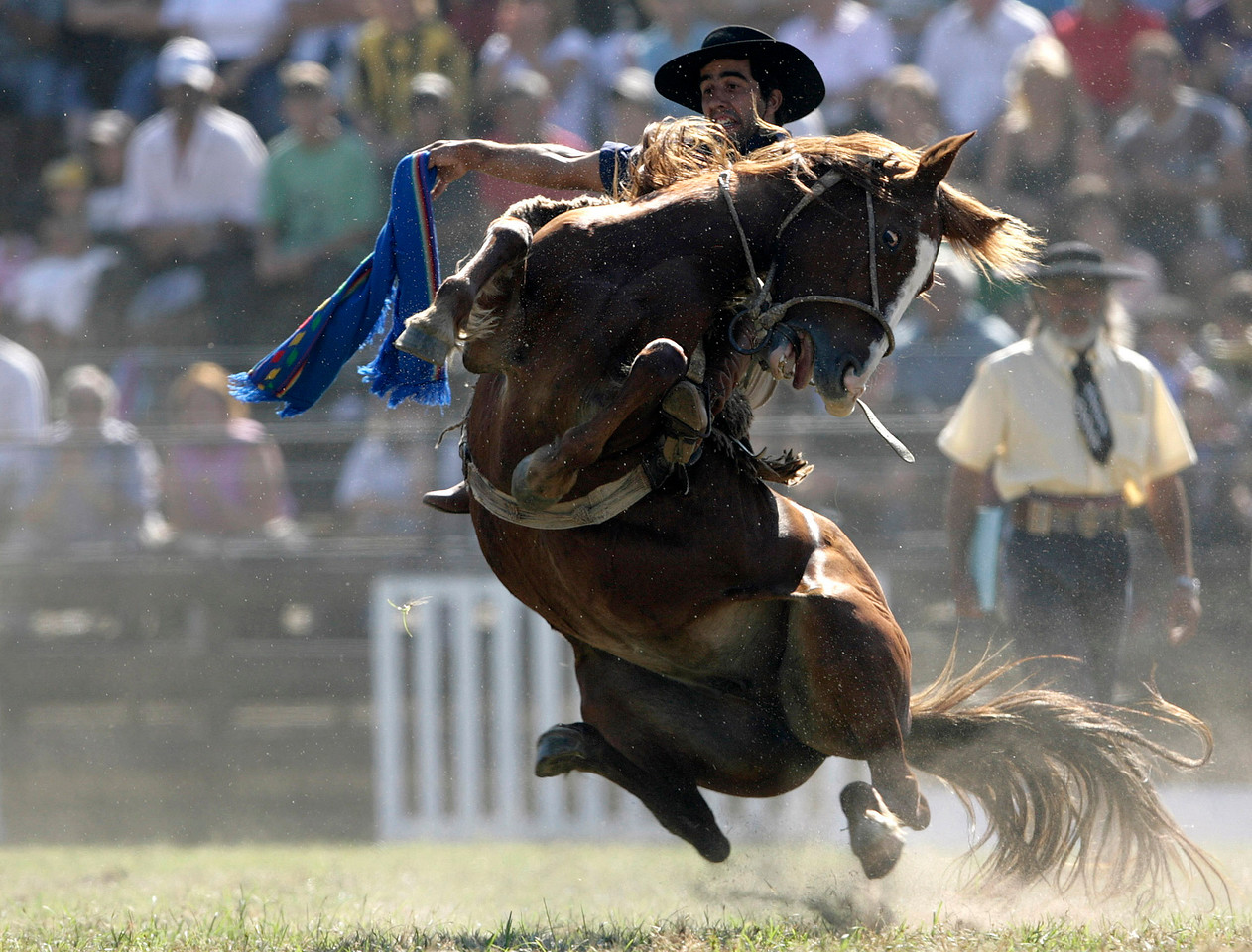 A gaucho rides an untamed horse during the celebration of Criolla (Creole) Week in Montevideo April 6, 2009. Gauchos all over the country came to Montevideo during Creole Week to compete for the award of best rider.  REUTERS/Andres Stapff