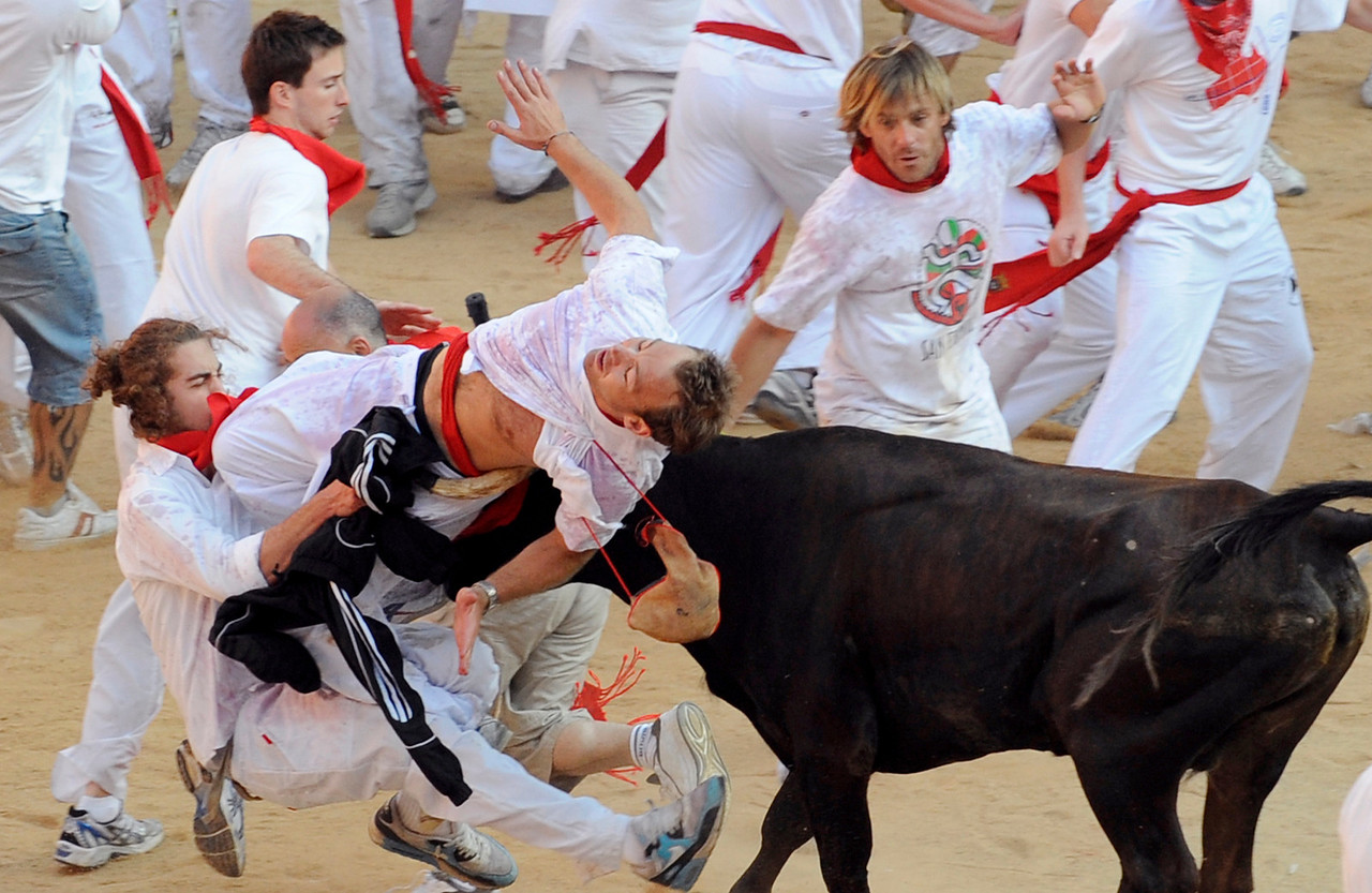 A heifer attacks a reveller in the Plaza de Toros at the end of the second running of the bulls of the San Fermin festival in Pamplona July 8, 2009. Six bulls are released every morning at 8:00 through the cobbled streets of Pamplona to the bullring, where they will be killed in a bullfight in the afternoon. REUTERS/Eloy Alonso