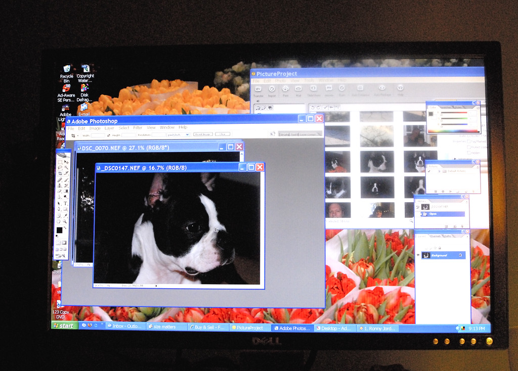 new 22 inch lcd computer monitor. sweet