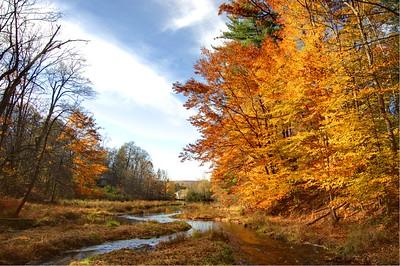 Millbrook Pond HDR1