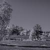 Fischbeker Heide (2)_0518__DSC0851_Lu