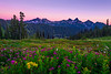 Tatoosh Range Twilight, Mt. Rainier NP, WA
