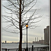 Early Spring, NYC <br /> Waiting for the ferry back to the New Jersey Shore.