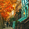 New York City - Autumn Colors
