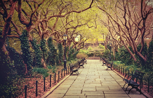 The Urban Forest Primeval - Conservatory Garden - Central Park - New York City