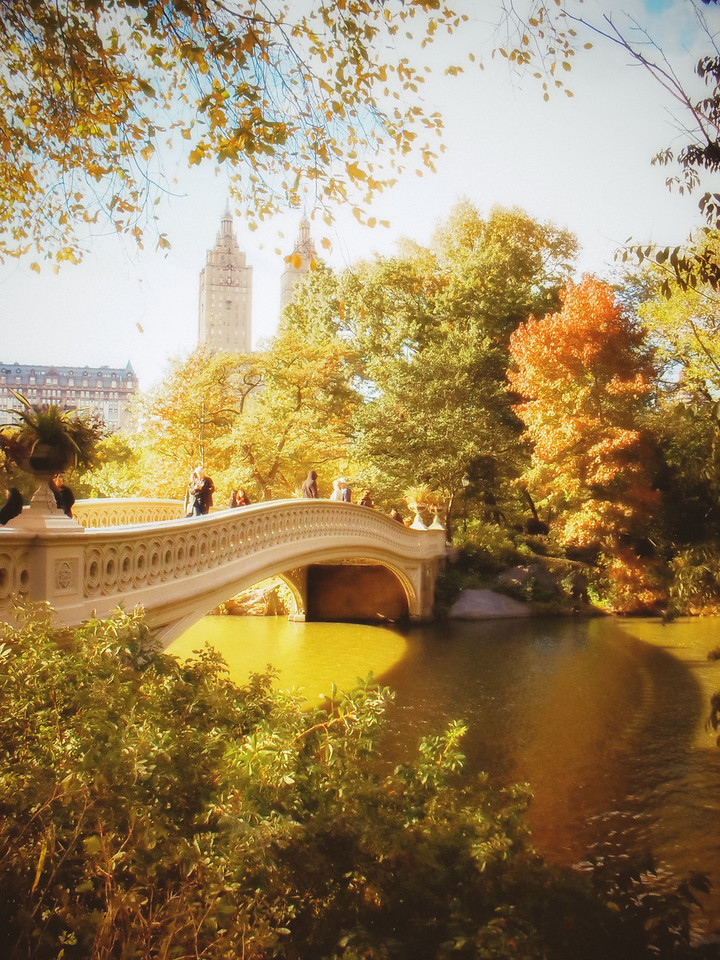 New York Autumn - Central Park's Bow Bridge with Fall Foliage