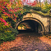Brooklyn - Autumn in Prospect Park