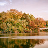 New York Autumn - Central Park - Bow Bridge and Fall Foliage