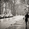 <h2>Rain - Greenwich Village - New York City</h2> - By Vivienne Gucwa<br><br>  I love rainy days in New York City. Rain is the sky's love song to the city.<br><br>  The sky opens up revealing an other-worldly light that cloaks the city in effervescent splendor. <br><br>  Sidewalks and streets, slick with promise, mirror the movement of urban explorers navigating the sleek concrete as taxi lights shine their refracted, blurred lights into the vast expanse of the rain-soaked landscape.<br><br>  ---<br><br>