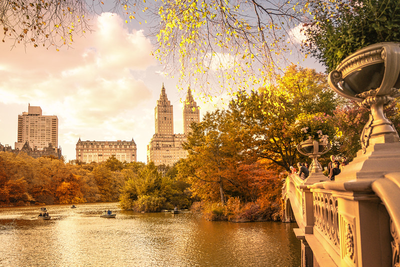 New York City Autumn