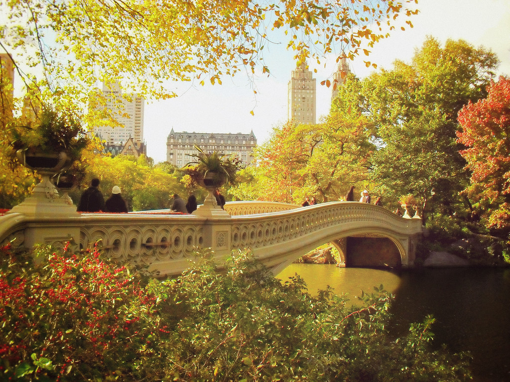 New York Autumn - Central Park Fall Colors - Bow Bridge