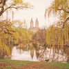 New York City - Springtime Landscape - Central Park