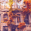 Upper West Side Brownstone in Autumn - New York City