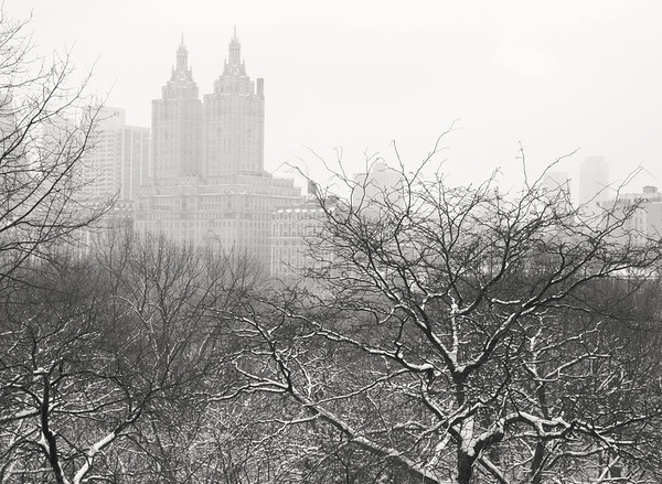 <h2>Deliquesce - San Remo - Central Park Winter</h2> - By Vivienne Gucwa  In the yawning hours of the morning, the earth stretches its snow-laden limbs skyward and the clouds leave a dissolving trail of heart-heavy whispers in their wake as all of the city's structures deliquesce into nothingness.  ---  This is a view from the top of Belvedere Castle during a snowstorm overlooking the iconic towers of the San Remo during the winter in Central Park, New York City.