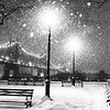 New York City Snow and City Lights
