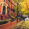 Brooklyn - Autumn - New York City