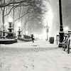 <h2>New York Winter - Snow on 42nd Street </h2> - By Vivienne Gucwa<br><br>  New York City resembles a snow-globe when snow first falls. As the snow swirls, the trees reach over the city streets as if they are trying to catch snowflakes with their bare, graceful branches.<br><br>  ---<br><br>  This was taken at night during a winter storm in New York City that dropped enough snow to turn the city into a winter wonderland momentarily. This is the area on 42nd Street next to Bryant Park across from the Grace Building which can be seen partially on the left-hand side of the image. It's one of my favorite spots to snow-gaze at night.<br><br>  ---<br><br>