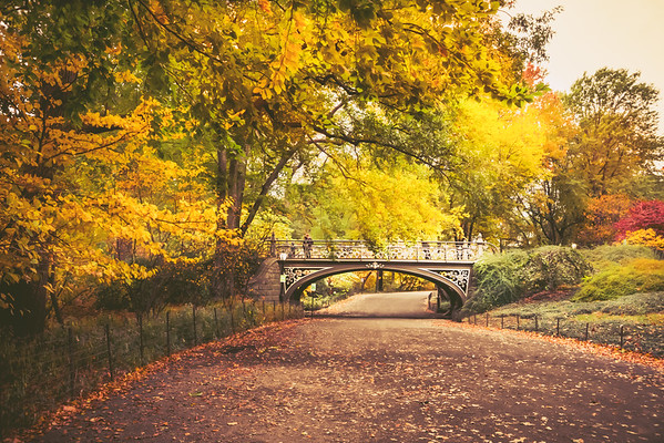Autumn - Central Park - Southeast Reservoir Bridge