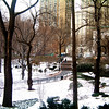 Central Park in New York City 2