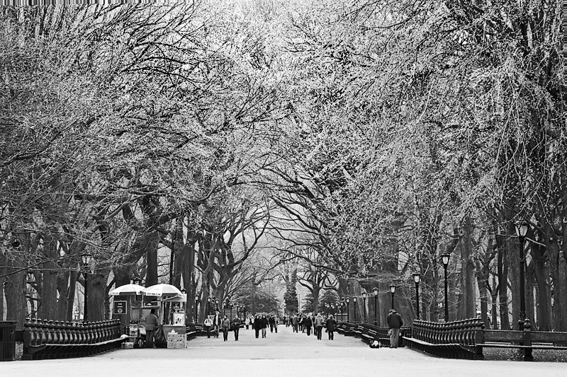Poets Walk, Central Park - New York City