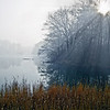 Foggy Durand Eastman Park in Rochester, New York
