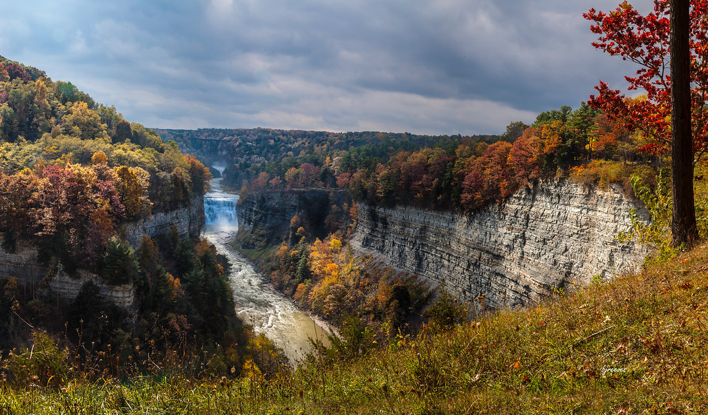 Middle and Upper Falls of Letchworth State Park