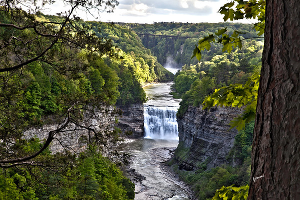 Letchworth Middle and Upper Falls