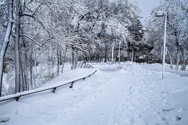 Icy February in Niagara Falls