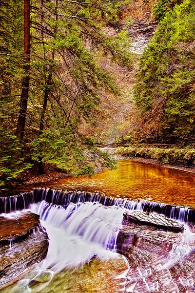 Stony Brook State Park in Dansville, New York