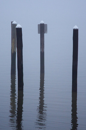 Wooden posts in Hudson River - Dobbs Ferry