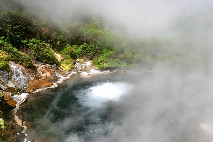 Waikite Thermal Stream, Rotorua, new Zealand  ©Tomas del Amo 2004