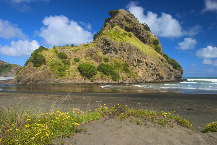 Lion Rock, Piha Beach, New Zealand  ©Tomas del amo 2004