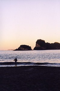 Cathedral Cove (north island)