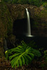 This lovely waterfall is in the city limits of Hilo.<br /> Photo © Cindy Clark