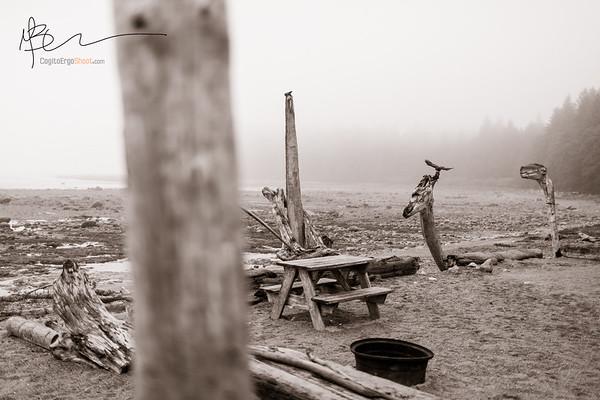 Mussel Beach Wilderness Campground, Uclulet