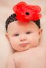 Baby Bensch (13 of 58)