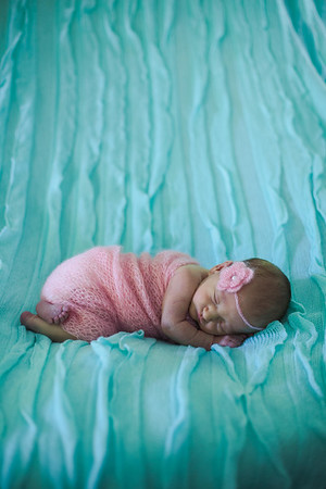Everly Newborn
