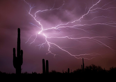 Arizona Monsoon Lightning