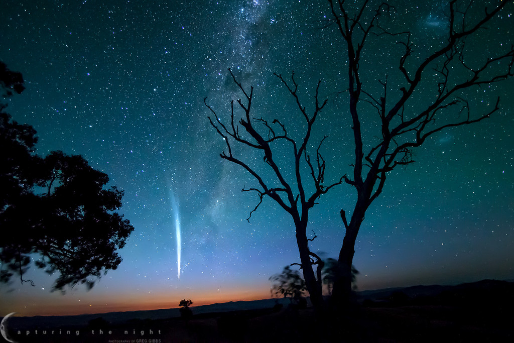 """""""Comet Lovejoy"""""""