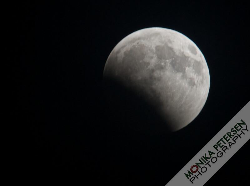 Lunar Eclipse, 2010