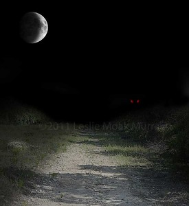 Dark Country Road With Red Glowing Eyes