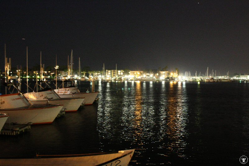 Day 16 - First attempt at shutter speed in the Harbor Lights in MDR