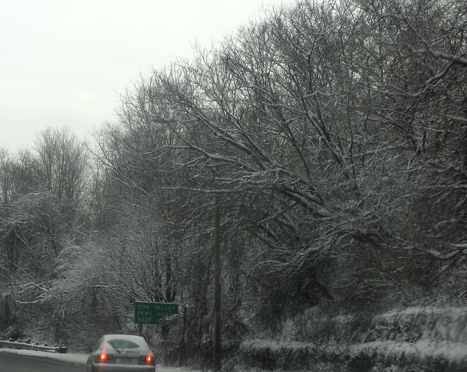 not bad shot while driving in a snow storm