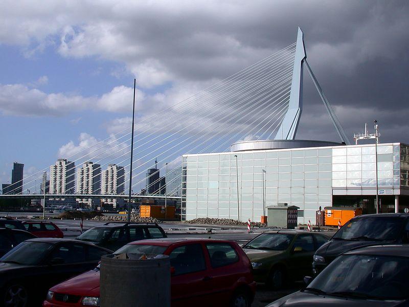 Rotterdam's Swan (The Needle).